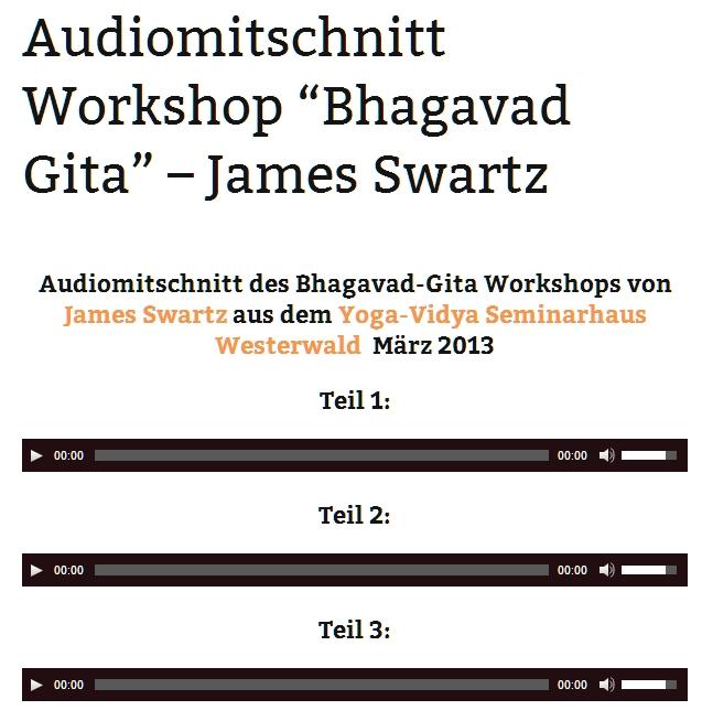 Beitrag - Audio JS BG 2013